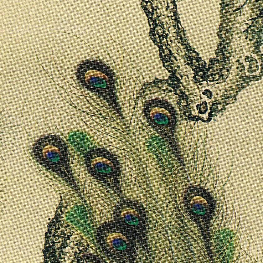 """""""Botan-Kujaku-zu Peacocks with Peonies Painting"""" by Okamoto Shūki"""