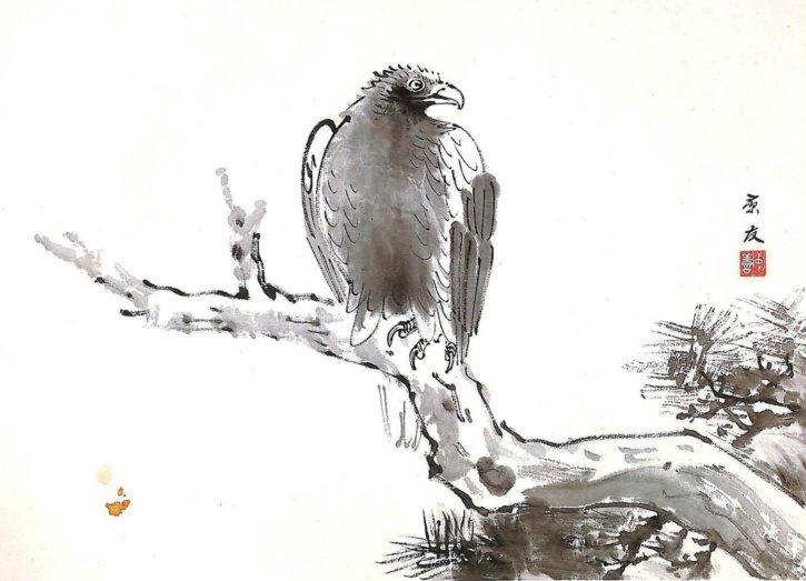 Hawk by Imanaka Soyū