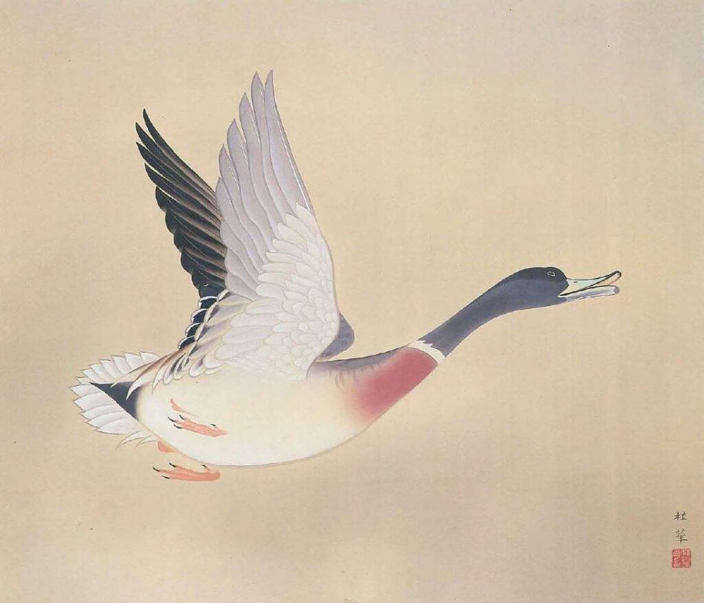 A Wild Goose by Kanashima Keika