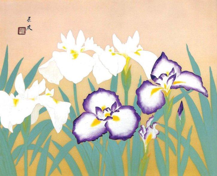 Iris by Imanaka Soyū